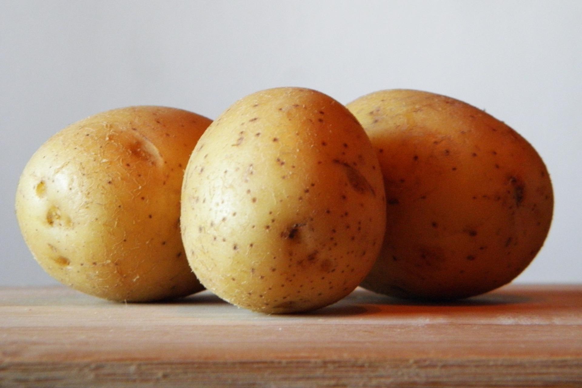pommes de terres de Vendée,
