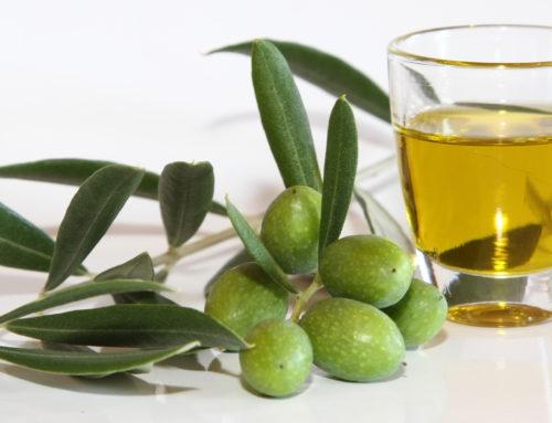L'huile de la Vallée des Baux